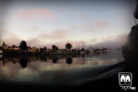 TAC - The Harbor at Night